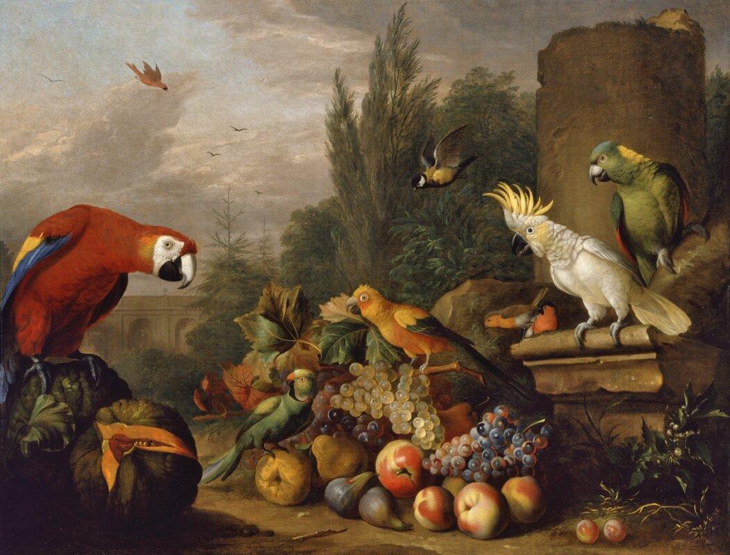 Bogdány Jakab - Gyümölcscsendélet, 18. század