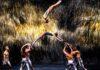 Recirquel: Solus Amor - fotó: Bálint Hirling