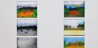 Szécsényi-Nagy Lóránd: Egy szimuláció képei - analóg videóból rögzített képek - részlet a sorozatból - Project833 Művésztelep Fotóworkshop kiállításán