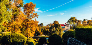 Schloss Esterházy - fotó: Josef Siffert